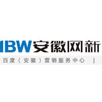 安徽网新实习招聘